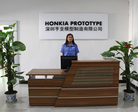 Honkia Prototype Limited